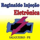 REGINALDO INJEÇÃO ELETRÔNICA