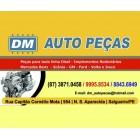 DM Auto Peças – Tudo para seu Caminhão