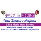 Vasos & Flores