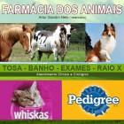 Farmácia dos Animais