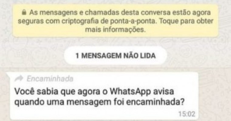 WhatsApp agora mostra quando mensagem foi encaminhada
