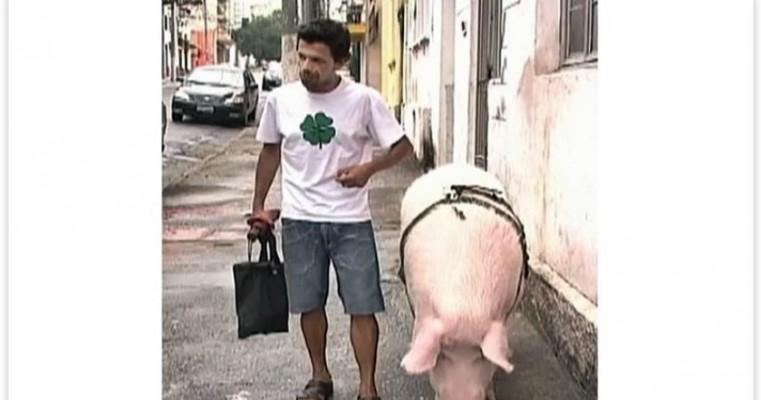 Após 4 anos de namoro, homem entra na justiça para poder casar com porca