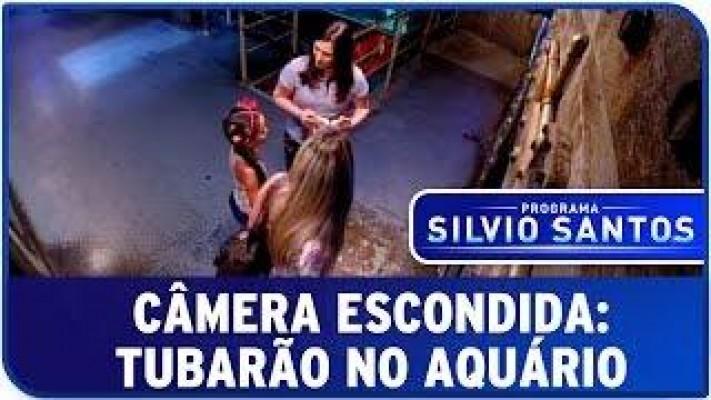 Camera Escondida do Silvio Santos: Tubarão no aquário