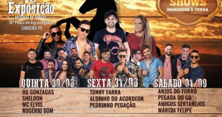 Sebrae-PE promove feira de artesanato durante a 40ª Exposição de Animais e 10ª Festa do Agronegócio de Limoeiro