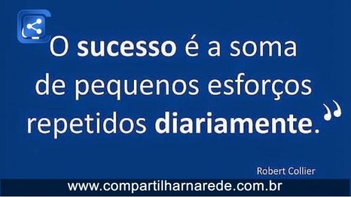 SUCESSO PROFISSIONAL - O sucesso é a soma de pequenos esforços repetido diariamente.