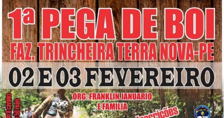 2 e 3 DE FEVEREIRO NA FAZ. TRINCHEIRA-TERRA NOVA-PE