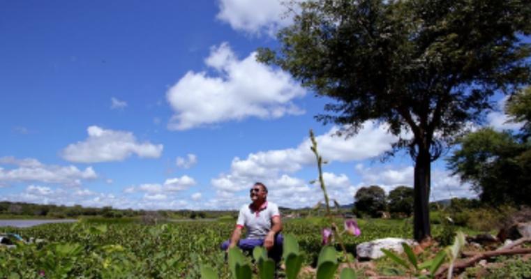 Chuva deixa o Sertão verde, mas é insuficiente para agricultura