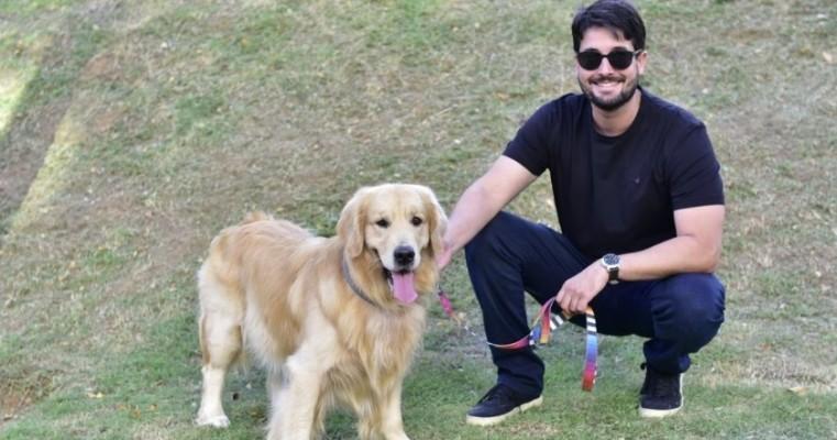 Nova lei prevê multa de R$684 por atropelar cão