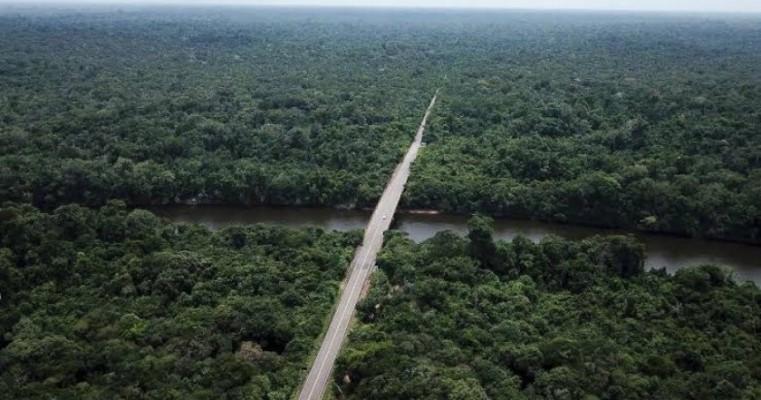 Criticada por Bolsonaro, Alemanha reage e divulga vídeo sobre suas florestas e parques