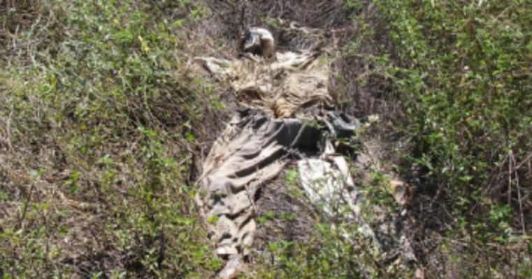 Salgueiro – Polícia recebe denúncia e localiza cadáver em estado de decomposição avançado