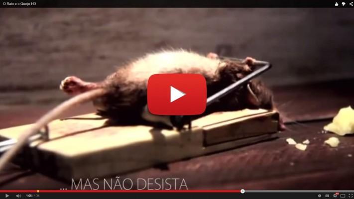 O Rato e o Queijo - MOTIVAÇÃO para o RECOMEÇO! Nunca desista de seu sonho.
