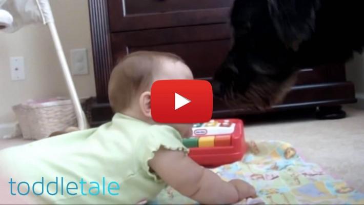 Mãe escuta o cachorro latir no quarto do bebê, corre desesperada e quando chega lá, tem grande surpresa!