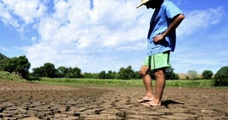 Governo de Pernambuco decreta Situação de Emergência em Salgueiro e outros 53 municípios por conta da seca