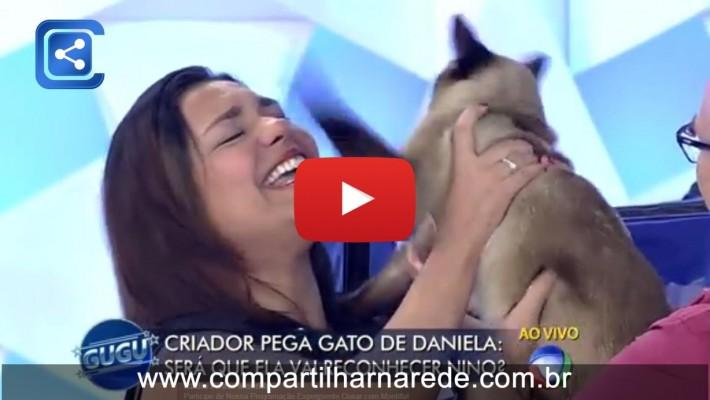 """Gato arranha rosto da dona ao vivo no """"Programa do Gugu"""""""