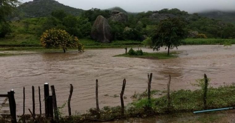 Chuva muda o cenário no Interior de Pernambuco