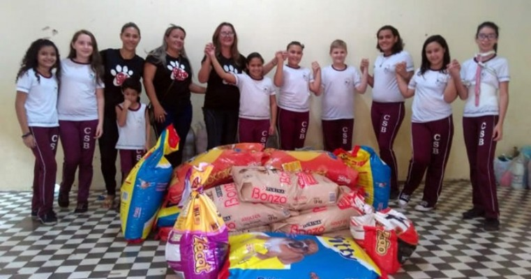 Estudantes arrecadam mais de 500 quilos de rações para abrigos de animais em Icó